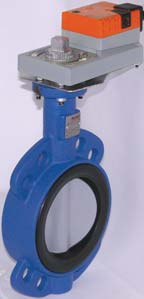 Belimo D(U)6 Series Butterfly Valve